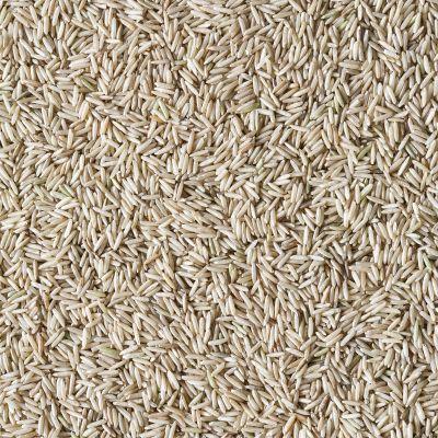 Basmati rijst volkoren (Biologische)