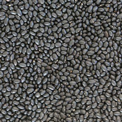 biologische zwarte bonen