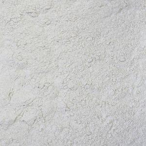 Tarwebloem brood (Biologische)