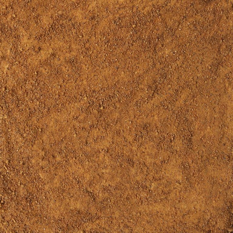 Palmsuiker (Biologische)
